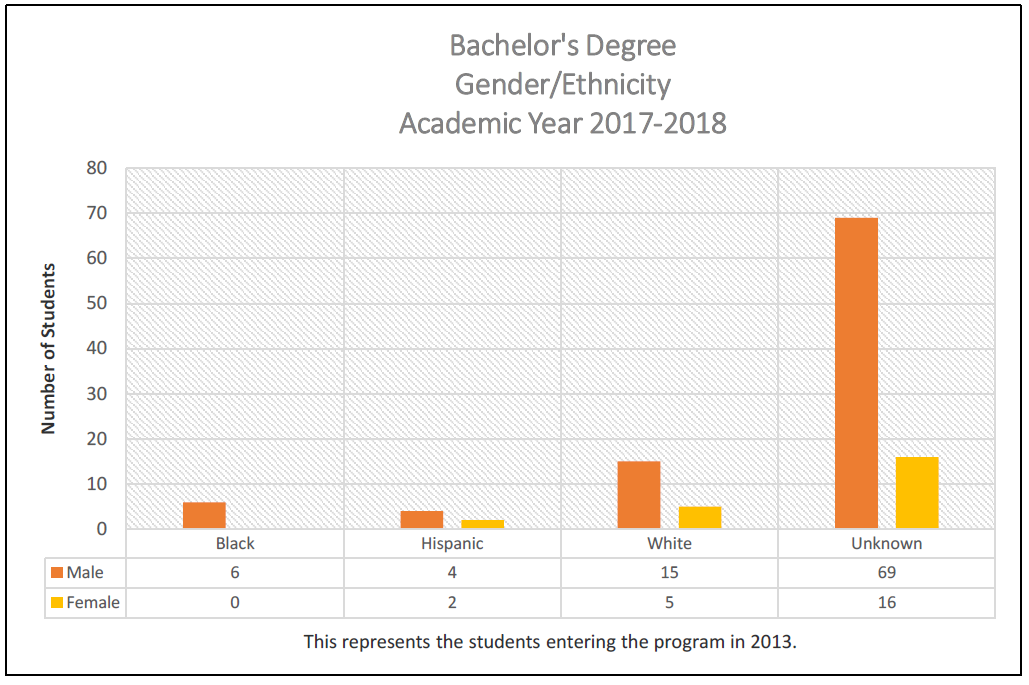 Bachelors Degree Gender/Ethnicity